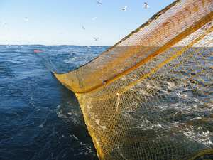 commercialfishing_header-img